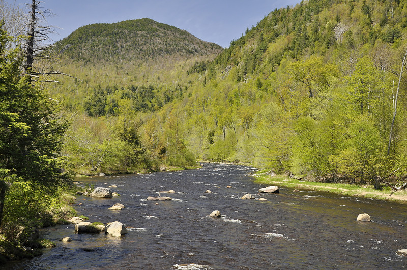 AuSable River 4_DSC6700