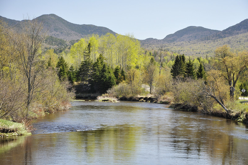 AuSable River 1_DSC6685