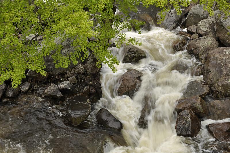 Fast river 1_DSC6305