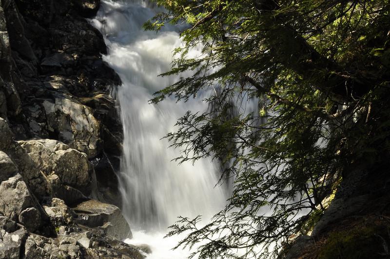 Pee-stop waterfall 7_DSC6984