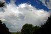 Copy of Rainbow - DSC_9750