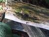 IMG00486-20100718-1810