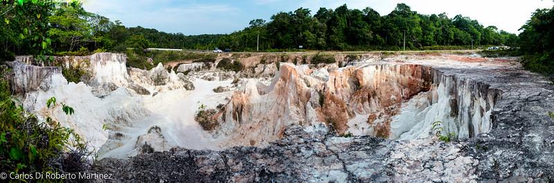 Deforestation area