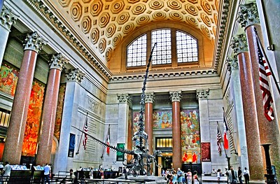 Theodore Roosevelt Rotunda in the American Museum of Natural History