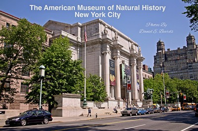 The American Museum of Natural History in New York City