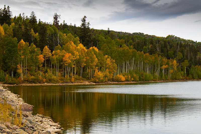 Fall at Kolob Reservoir, near Zion National Park