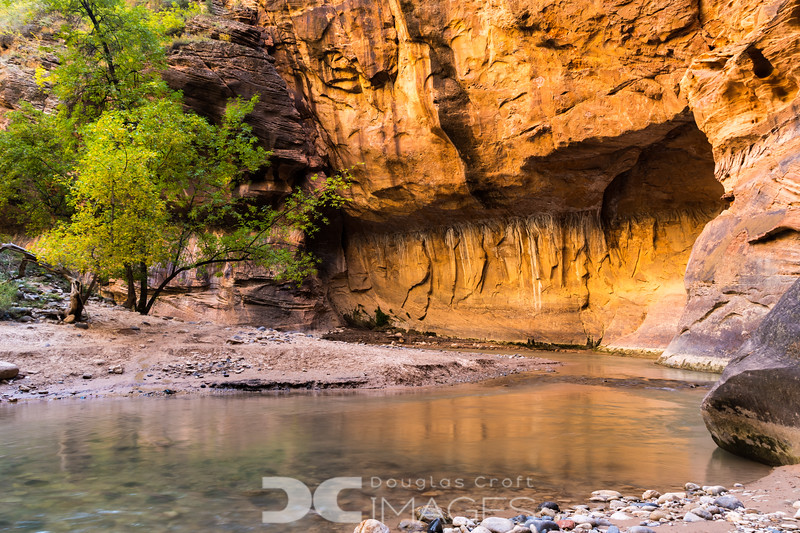 Reflected Light - The Narrows