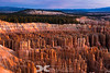 Morning Light  - Bryce Amphitheater