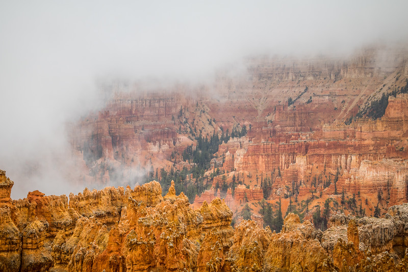 Fog in Bryce Canyon