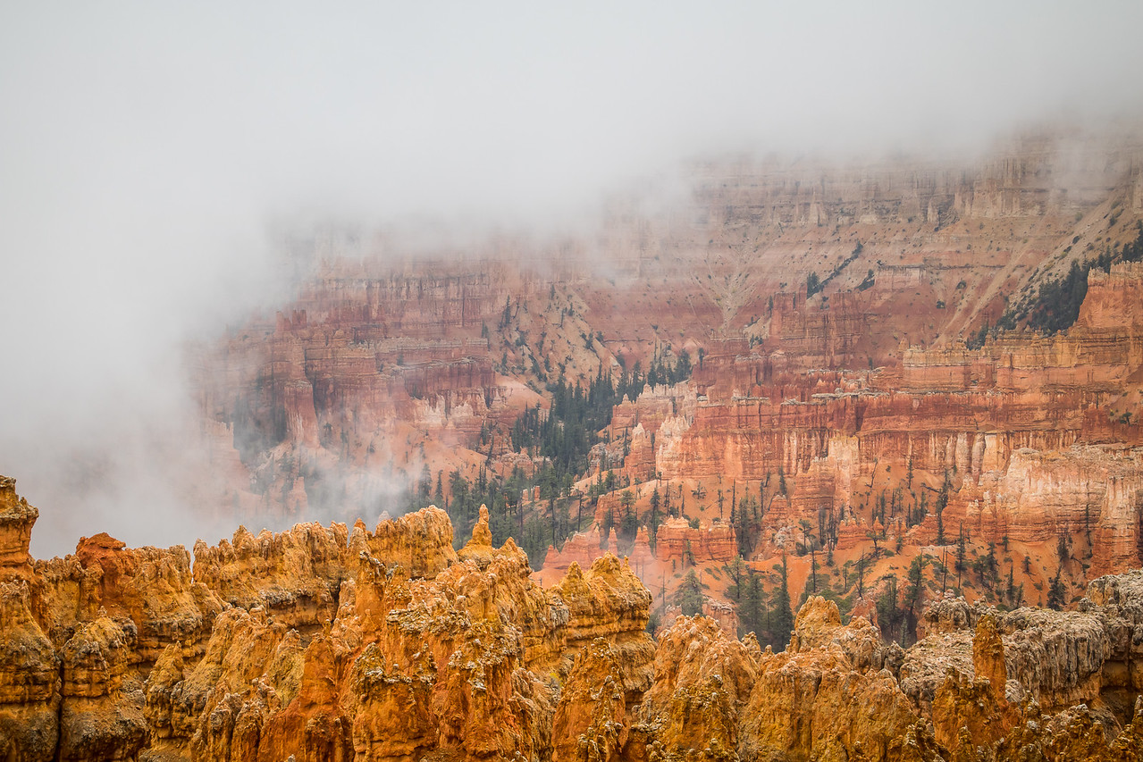 Fog in Bryce Canyon
