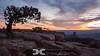 Sunrise at Deadhorse Point