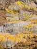 End of Autumn in the La Sals