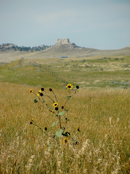The Hat, Higway 85, WY