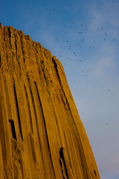 Vultures soar on the aircurrents around the tower as the sun sets