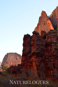 Zion Catching Light