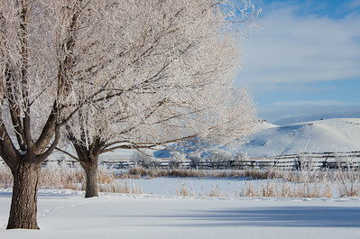 A winter afternoon on the outskirts of Jackson, Wyoming, near the Grand Tetons