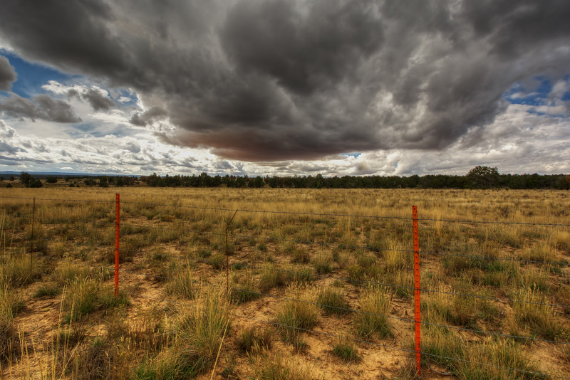 Storm Approaching Meadow