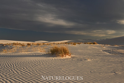 Stormy Sky Over White Sands