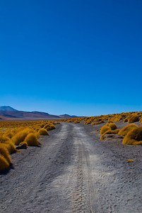 Typical road in the Bolivian desert