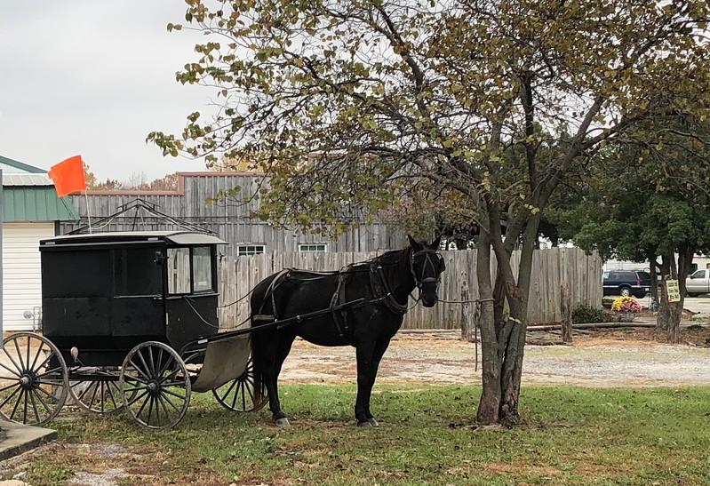 Amish parking