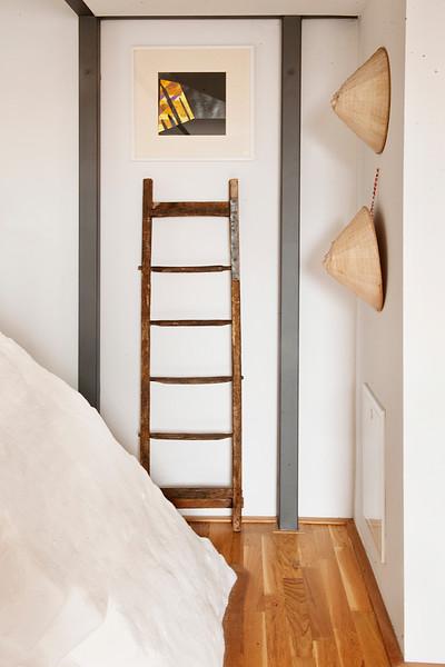 OLL_8779 ladder