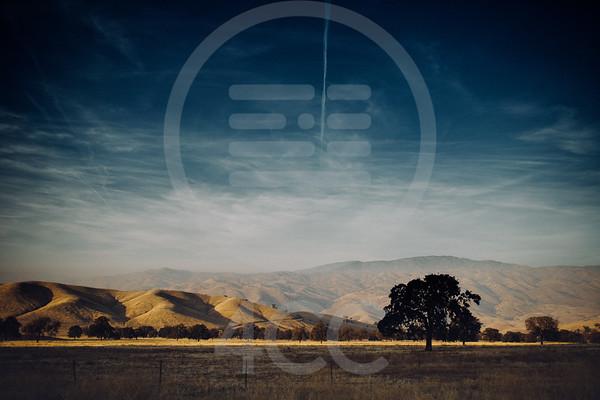 Kern Co Landscape