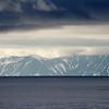 Blue Whale at Sea 6:25 008
