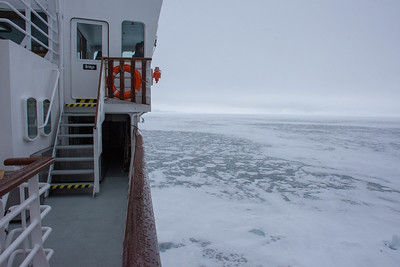 Thin & Patchy Sea Ice, from NG Explorer