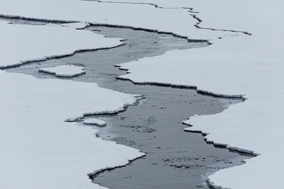 A Lead in Frozen Sea Ice