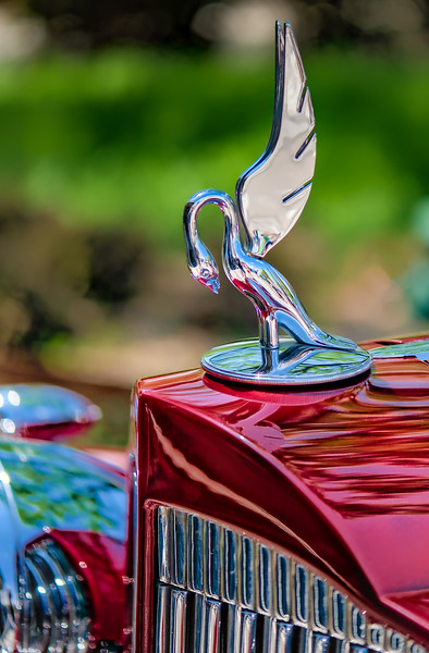 Packard Hood Ornament (1 of 1)