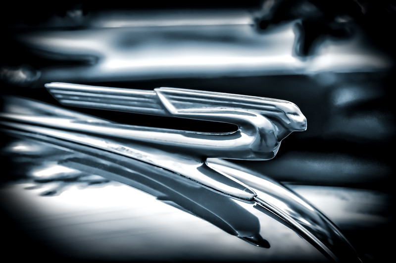 Streaking Hood Ornament - B&W (1 of 1)