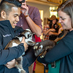 People holding and playing with baby goats during the Art of Cheese's Cheesemaking 101, Cheese and Hard Cider with Baby Goats class at St. Vrain Cidery in Longmont, CO on April 17, 2018