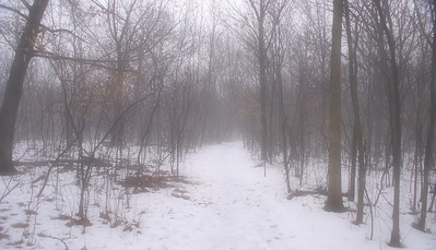 The Path to Nowhere - Channahon, IL