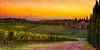 Last Light in the Vineyards of Chianti...