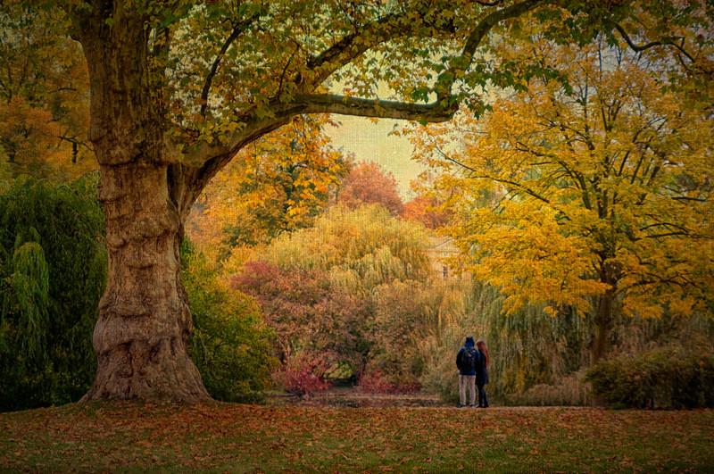 Autumn Love - Potsdam, Germany