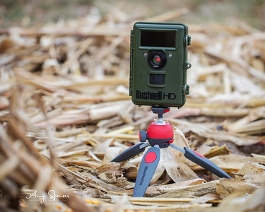 My Bushnell NatureView Cam HD