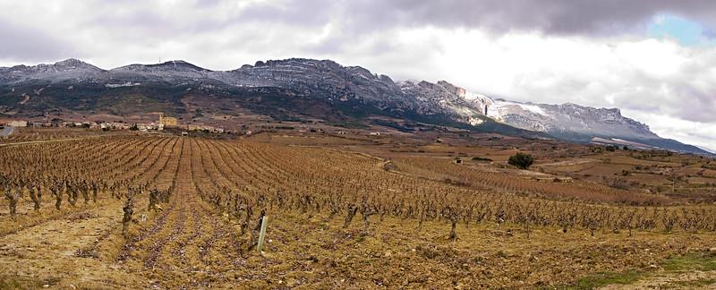 Rioja Panorama1.jpg