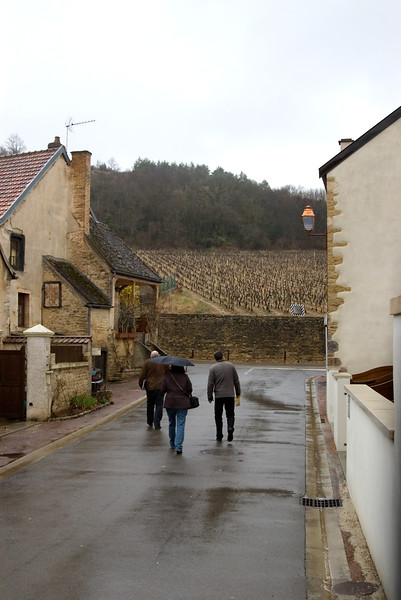 Rainy day in Burgundy for visiting Domaine Bertheau in Chambolle-Musigny.