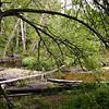 067 Lahemaa Nat'l Park