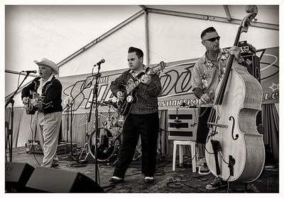 The Doggone Honkabillies, July 2013