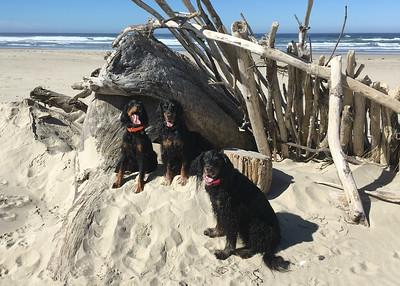 Thursday Beach Day - Sept 2018
