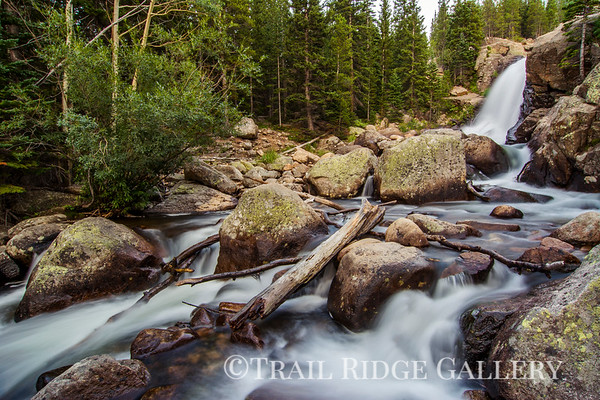 Alberta Falls - H