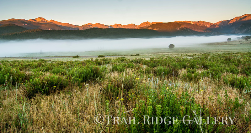 Morning Light In The Rockies