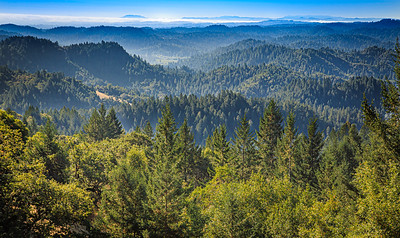 The Coastal Range - Sonoma County