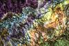 093 Royal Velvet Obsidian Abstraction