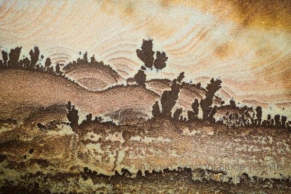 163 Desert Landscape