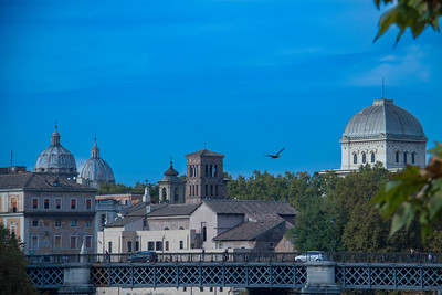 111101_24_IT_Rome-1