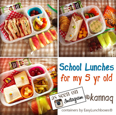 Lunch For Your 5 Year Old