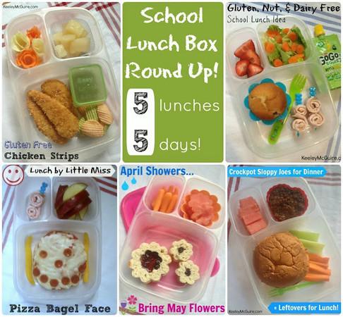 School Lunch Box Round Up