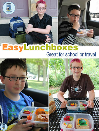 Teenage Lunches
